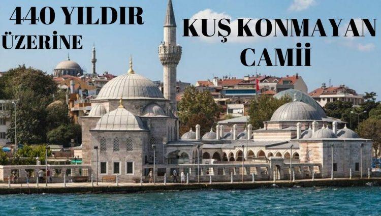 440 YILDIR ÜZERİNE KUŞ KONMAYAN CAMİ (Şemsi Paşa - Kuşkonmaz Cami)